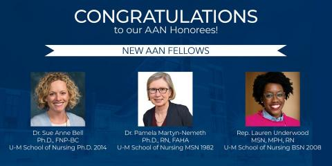 AAN fellows overview graphic